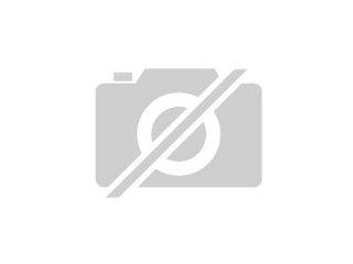 Harlekin Axolotl
